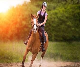 Horse Riding_GM Marketing
